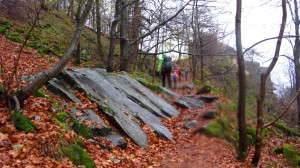 Auf dem Weg zur Milseburg Schutzhütte, immer noch mit Wasserfleck