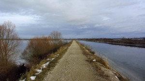 Dieser Damm trennt den Speichersee vom Mittlere-Isar-Kanal