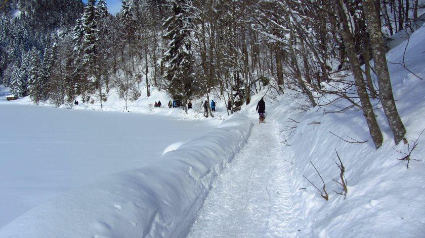 Die Winterwanderung rund um den Spitzingsee ist eine ganz entspannte Sache