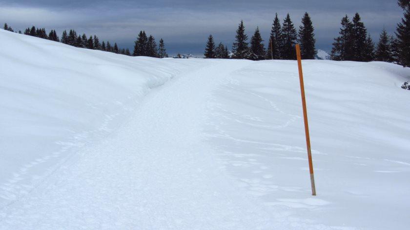 Ein schöner, leichter Winterwanderweg für die ganze Familie