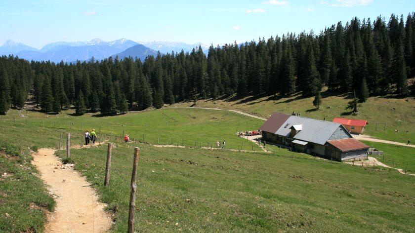 Auf dem Abstiegsweg vom Jochberg zur Jochbergalm