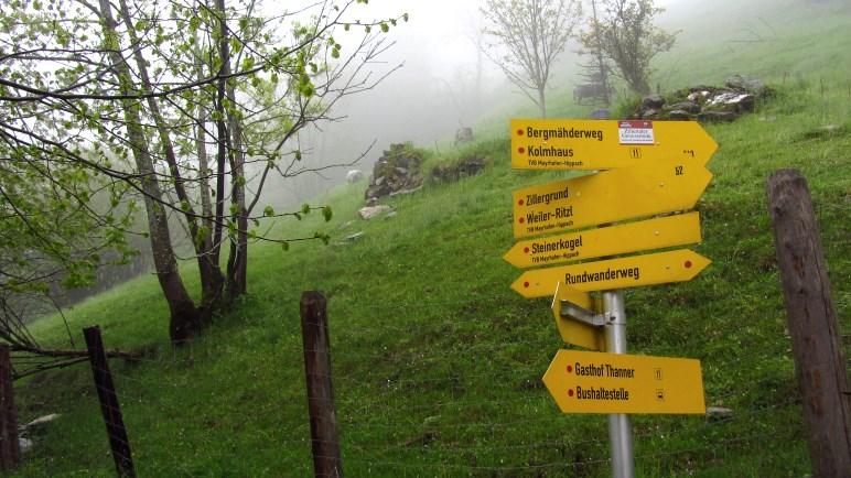 Viele Möglichkeiten, an der Ziegenwiese-Kreuzung. Wir gehen in Richtung Gasthof Thanner.