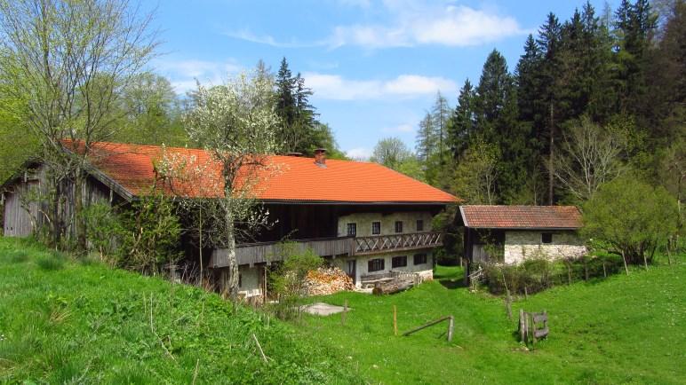 Bauer am Berg - ein Bauernhof mit über 300jähriger Tradition