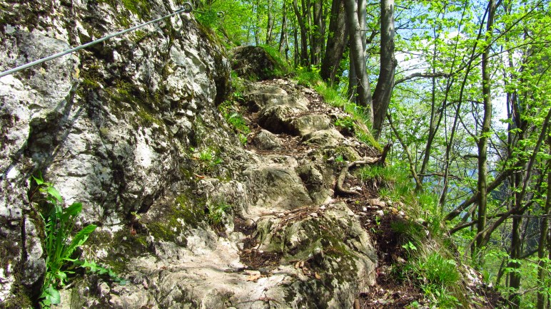 Ein wenig Bergsteigfeeling: der kurze, aber seilversicherte, Steig hinter dem Petersberg