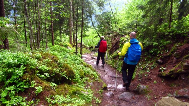 Auf dem Weg zurück nach Mayrhofen