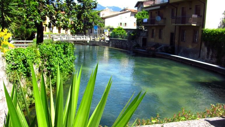 In diesem Becken entspringt der Aril. Aus dem Boden drückt das Wasser ins Becken.