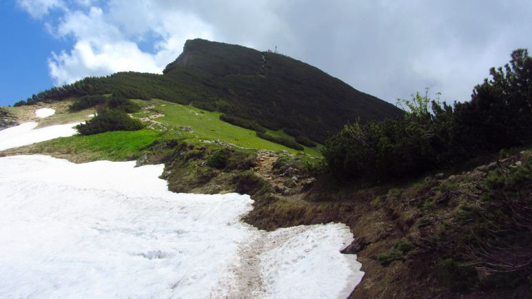 Schneefeld am Nordhang, kurz vor dem Geigelstein