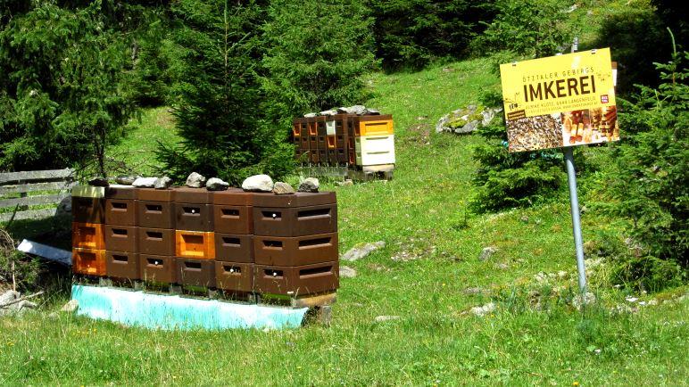 Viel Flugverkehr an den Bienenstöcken der Ötztaler Gebirgs-Imkerei