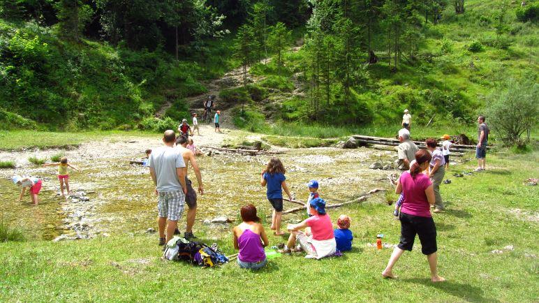 Die große Picknickwiese der Stockeralm mit dem Hachelbach