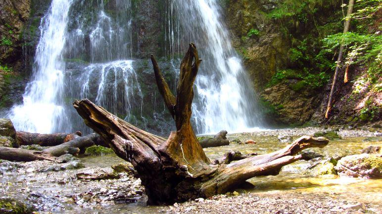 Wachsreste auf der großen Wurzel vor dem Wasserfall - hier wird wohl öfter mal gefeiert