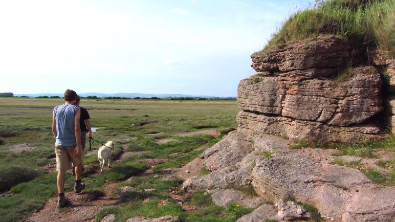 Fels und Salzwiesen auf dem Küstenweg