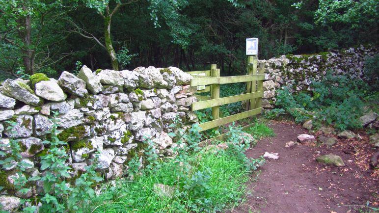 Durch die Steinmauer führt der Weg aus dem Wald heraus