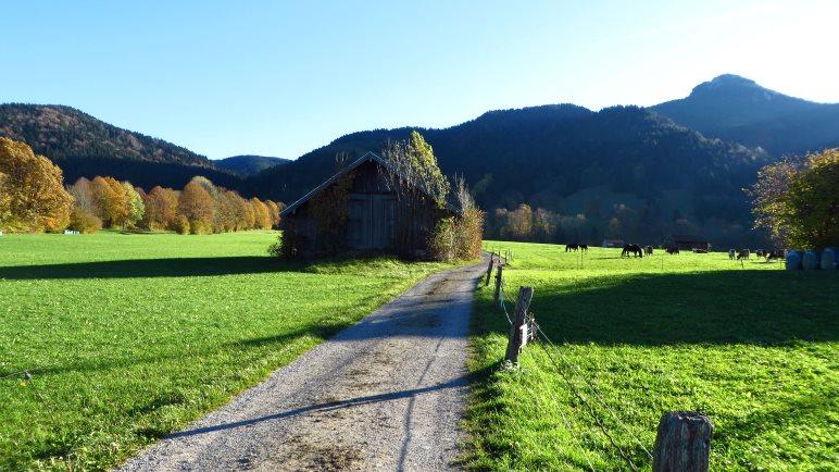 Über die Wiesen gehen wir dem Aufstieg zum Geierstein entgegen