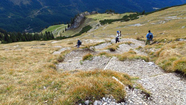 Über den Serpentinenweg geht es hinab zur Bärenbadalm