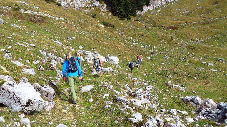 Über die Wiese wandern wir in Richtung Gipfel