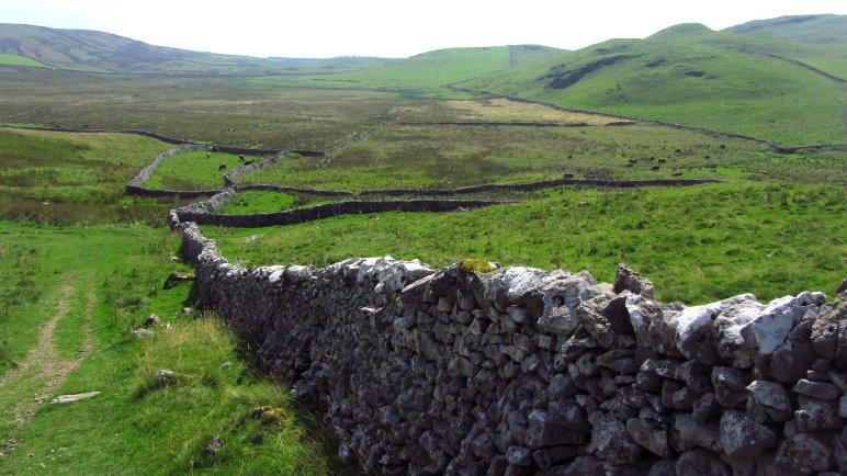 Weiden, von Steinmauern durchzogen, soweit das Auge reicht