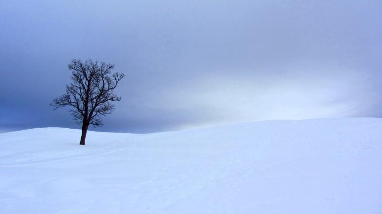 Winterwandern in Bayern, hier auf der Hemmersuppenalm oberhalb von Reit im Winkl