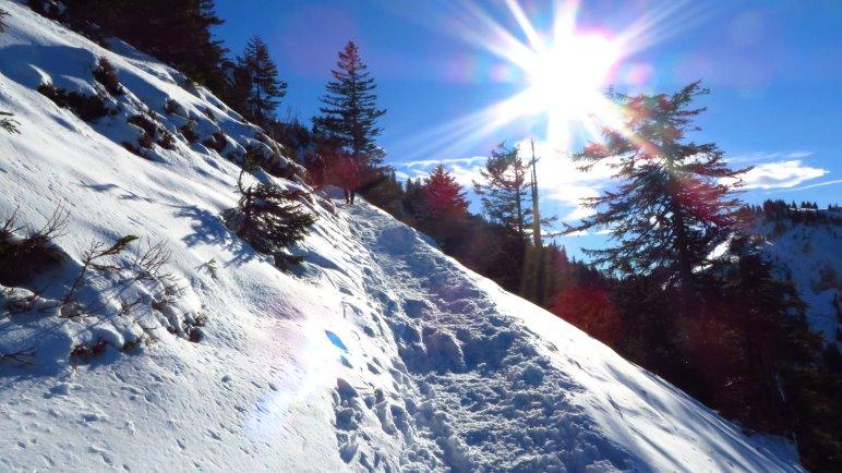 Im oberen Teil des Aufstiegs zur Hochries habe ich endlich eine geschlossene Schneedecke