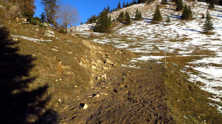 Wiesenaufstieg und geschmolzener Schnee =  extra batziger Weg