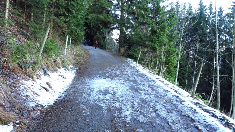 Die Forststraße zur Doaglalm dient eigentlich auch als Rodelbahn. Nicht so im Dezember 2013
