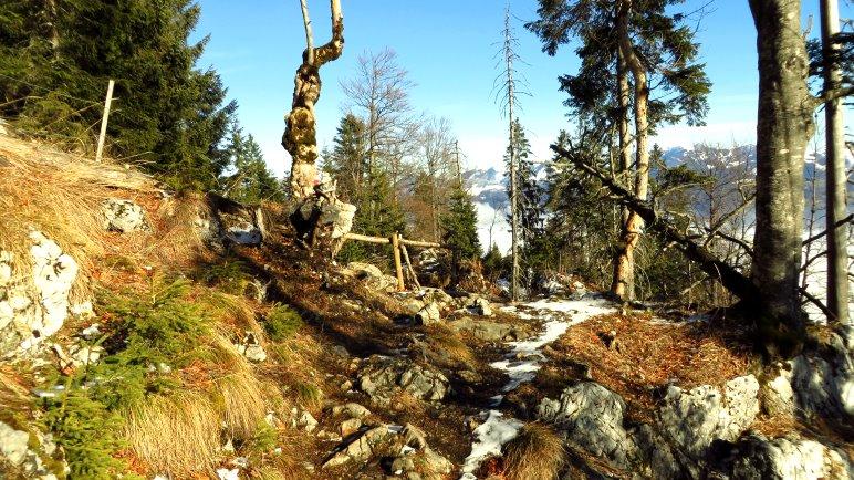 Der Pfad zum Brünnsteinhaus wird auf den letzten Metern sonnig und führt an einem wilden Berghang entlang