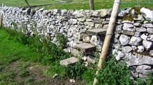 Immer wieder geht es über solche Treppen über Steinmauern