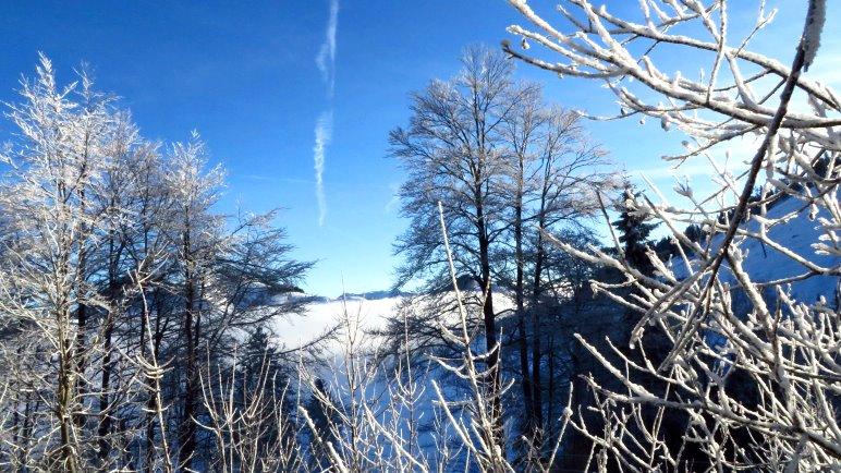 Vorzeige-Winterausblick auf der Sudelfeldstrasse