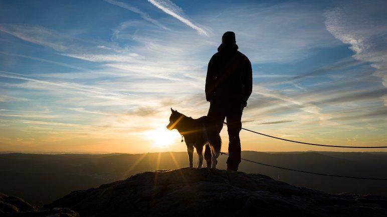 Im Sonnenaufgang am Großen Arber - Foto: Jens Franke