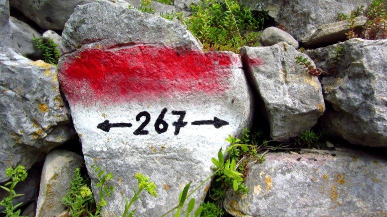 Auch ein Tag: 267