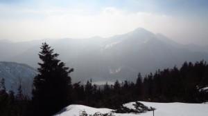 Die Bäume als Schattenriß vor dem Bergpanorama