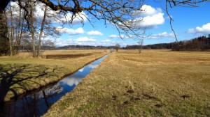 Dieser kleine, schnurgerade Kanal führt von der Straße zu Pelhamer See
