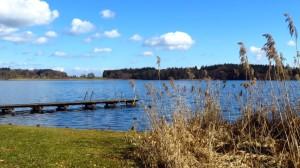 Am Pelhamer See, an der Badestelle am Ort Pelham