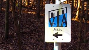 Die Via Julia führt durch das Naturschutzgebiet Eggstätt Hemdorfer Seenplatte