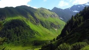 Grüne Berge rund herum