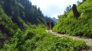 Kurz hinter der Brücke, auf dem Weg zur Hirzbachalm