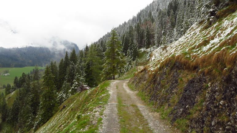 Auf dem Weg von der Neuhüttenalm
