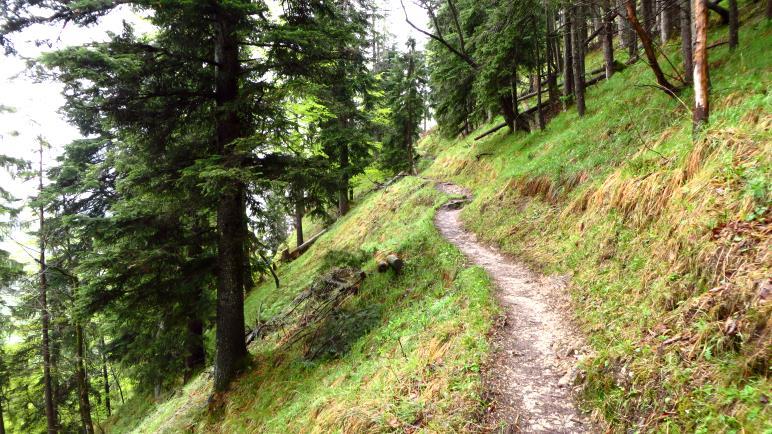 Als schmaler Bergsteig zieht sich der Weg in Serpentinen bergauf