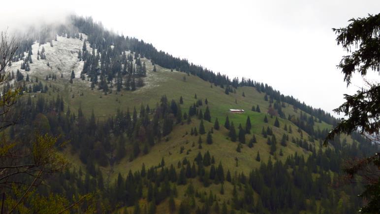 Gegenüber liegt die Neuhüttenalm, inzwischen schneefrei. Dahinter der Seebergkopf