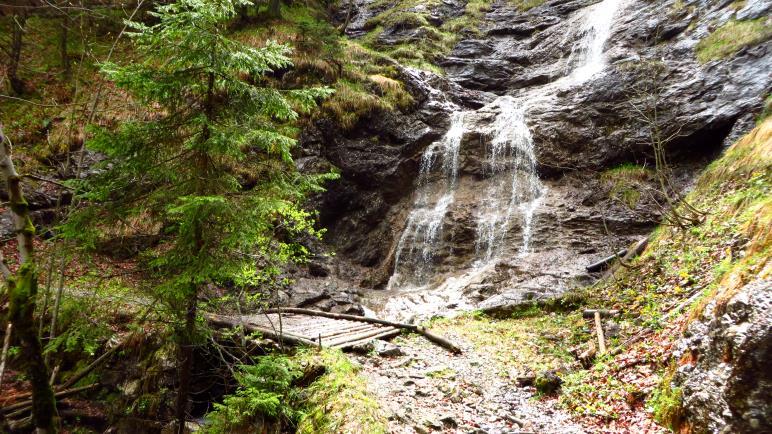 Ein schöner Wasserfall im Wald
