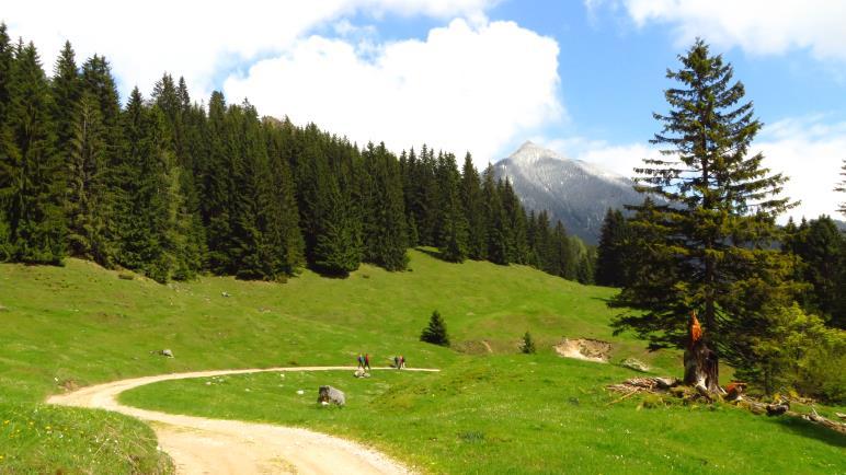 Die letzten Meter zum sillberghaus