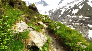Auf dem schmalen Steig zur Greizer Hütte