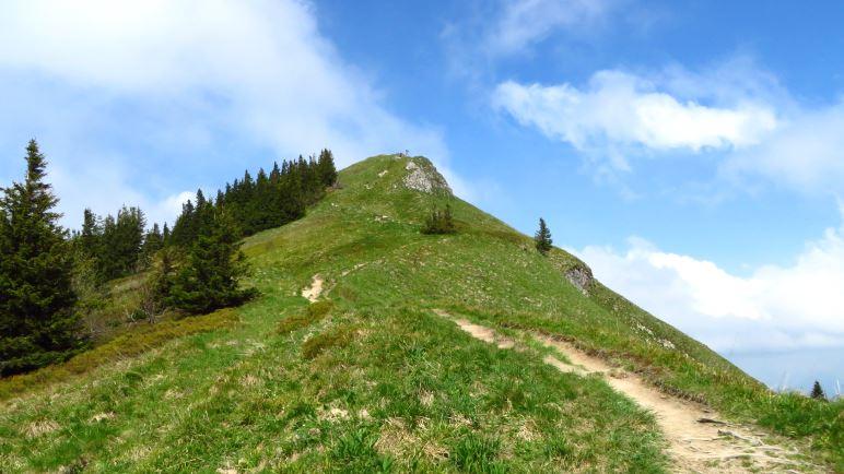 Kurz vorm Gipfel. Hier rechtsabbiegen, dann hat man den felsigen Weg im Aufstieg