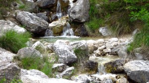 Der Bach im Valle del Signol