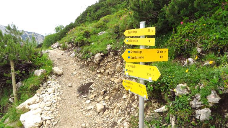 Landsberger Hütte oder Strindenalpe? Heute wird es der kurze Weg zur Strindenalpe