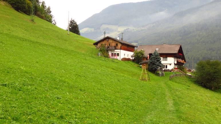 Am Ausstieg des Steigs steht man auf der Wiese des Unterpursteinhofs