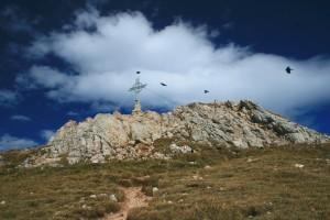 Nur der oberste Gipfelbereich der Rofanspitze mit dem Gipfelkreuz ist felsig, davor ist es auf diesem Weg ein Grasberg
