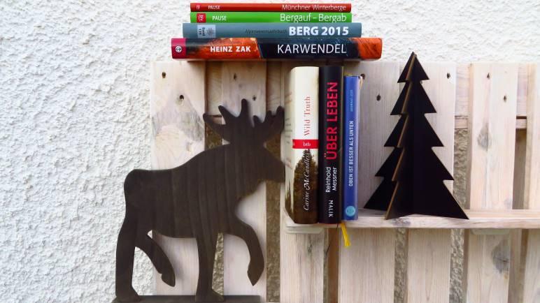 Buchtipps zu Weihnachten - als Last-Minute-Geschenk oder als sinnvolle Investionen eines Gutscheins