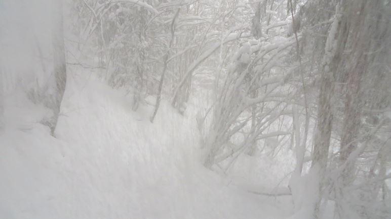 Oh, eine Baumlawine, sehr erfrischend, wenn der Schnee in den Nacken fällt