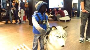 Die eigene GoPro für Kind und Hund