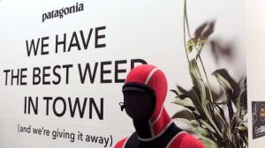 We have the best weed in town - und das glaube ich Euch sogar!